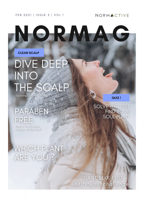 Normag-Issue3-Vol1