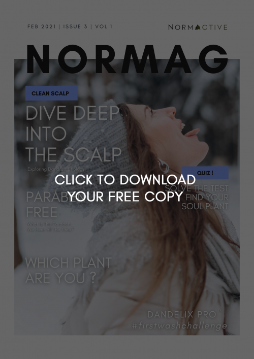 normag_february2021